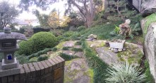 End of Francis St. Gorgeous Japanese garden.