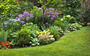 оформление сада ландшафтный дизайн 3