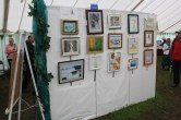 2017 New Forest Show - Art