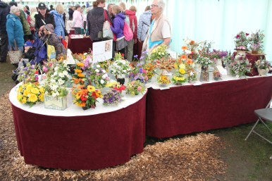 2017 New Forest Show - Flower Arrangements