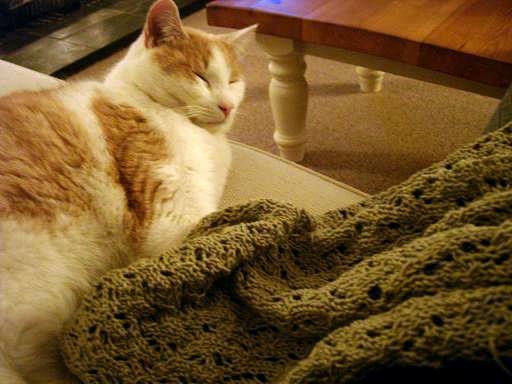 Knittinghyp2
