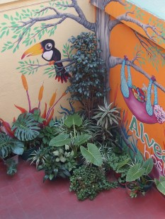 Il patio dell'ostello Alvear di Córdoba