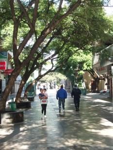 Calle Obispo Trejo