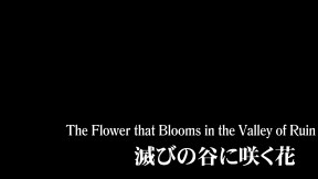 Casshern_Sins_Ep09_The_Flower_that_Blooms_in_the_Valley_of_Ruin_[1080p,BluRay,x264]_-_THORA.mkv_snapshot_03.39_[2016.08.30_04.48.34]