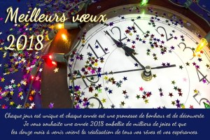 Vœux-2018-dans-lunification