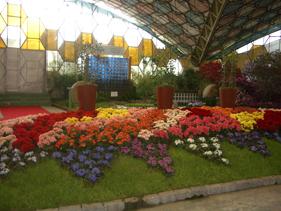 アルゼンチンの花祭り