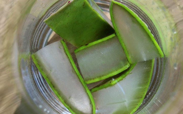Aloe Vera-Kosmetik wirkt antioxidativ, erfrischend und beruhigend auf die Haut