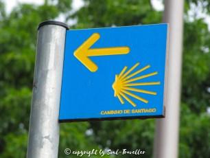 soul-traveller-camino-portugese-central_044