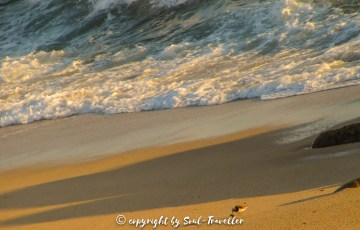 soul-traveller-camino-portugese-central_074