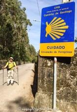 soul-traveller-camino-portugese-central_088