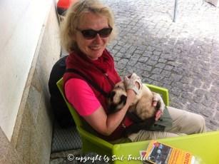 soul-traveller-camino-portugese-central_130