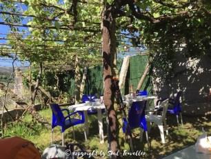 soul-traveller-camino-portugese-central_258