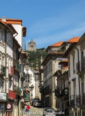 soul-traveller-camino-portugese-central_325
