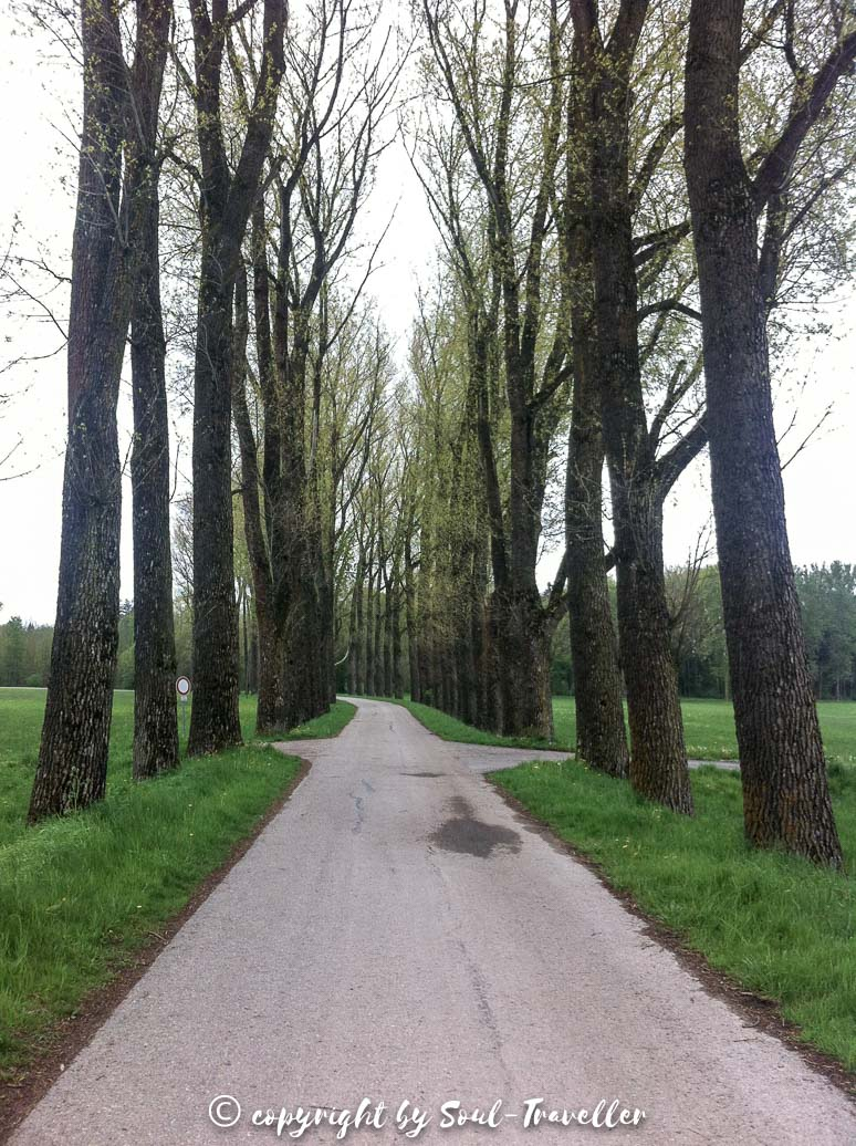 soul-traveller-jakobsweg-augsburg-bad-woerisshofen-006