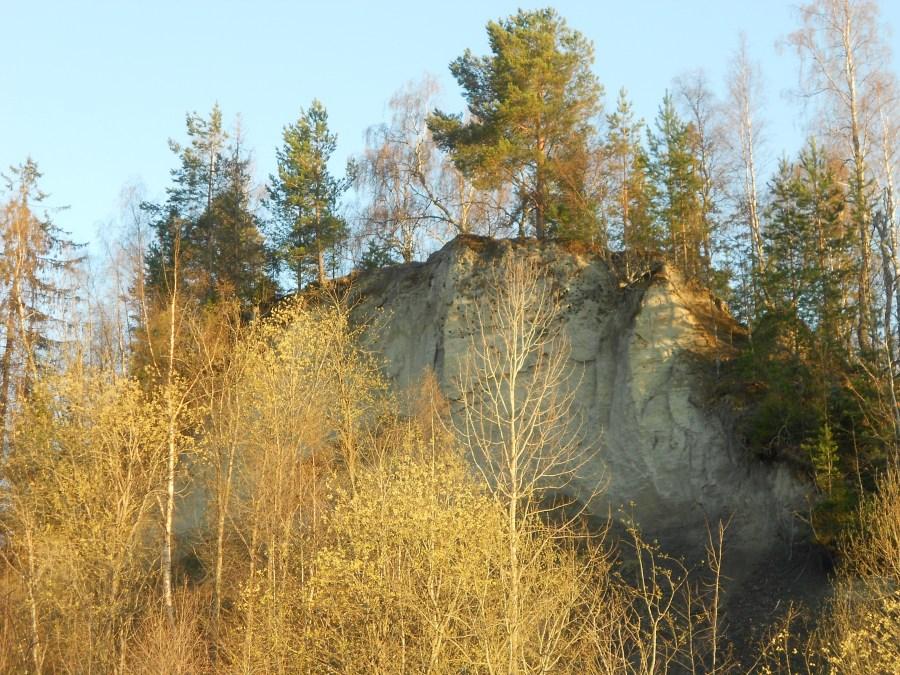 Borgnipan i Sollefteå