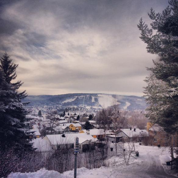 Vinter i Sollefteå