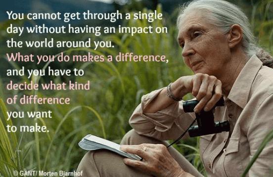 珍古德談論什麼讓我們人類不同?