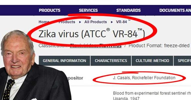 zika-virus-rockerfeller