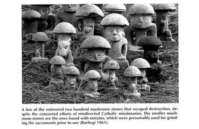 ancientmushroomstonesinmesoamerica