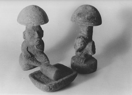 ancientmushtroomsmaya