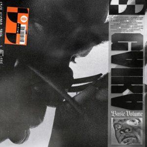 Basic Volume album cover