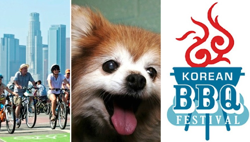 6/21-6/23: CicLAvia, dog lovers and KBBQ connoisseurs!