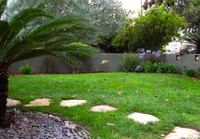 Grassy yard