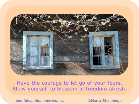 Have the courage to let go of your fears. Allow yourself to blossom in freedom afresh.