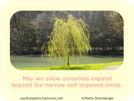 """May we allow ourselves expand beyond the narrow self-imposed limits."""