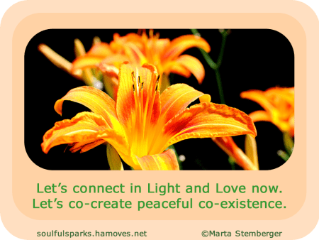 """Let's connect in Light and Love now. Let's co-create peaceful co-existence."""