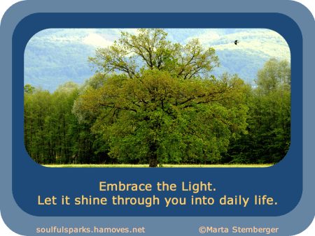 """""""Embrace the Light. Let it shine through you into daily life."""""""