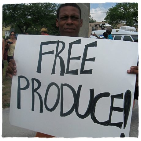 Free Produce1