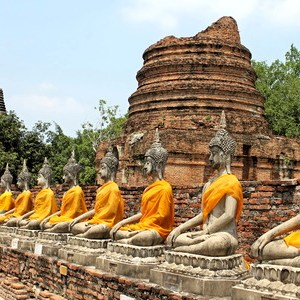 Find your path like Buddha did with spiritual counseling