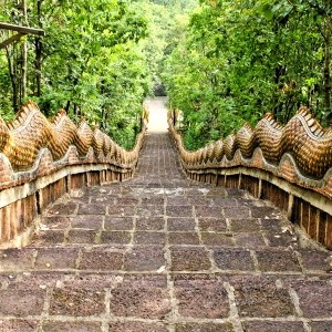 develop spiritual freedom with spiritual counseling coaching