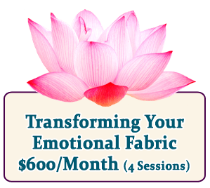 Transforming Your Emotional Fabric Coaching Program
