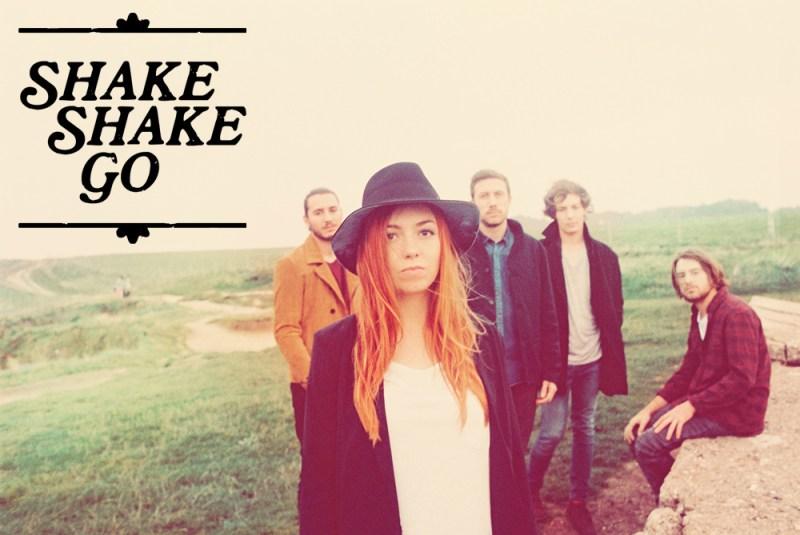 ShakeShakeGo_teaserbild