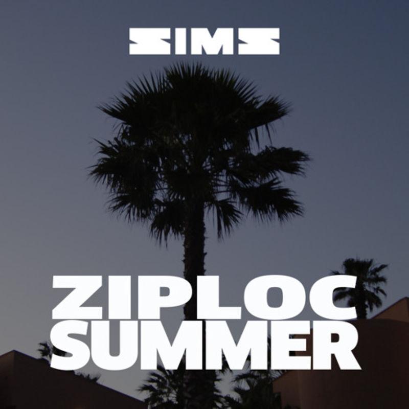 ziploc summer