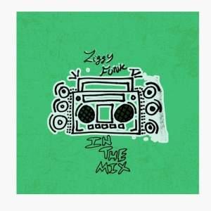 Ziggy Funk NOV 2018 DJ MIX