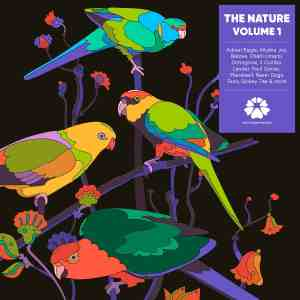 The Nature Volume 1 (Aussie Soul Compilation) • full Album-Stream