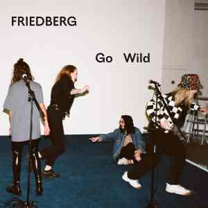 Videopremiere: Friedberg - Go Wild