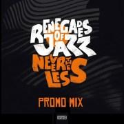 "Renegades Of Jazz ""Nevertheless Promo Mix"""