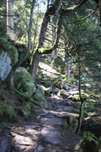 Lac de Gerardmer_souliervertblog