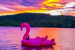 Un été au bord de l'eau_souliervert.com