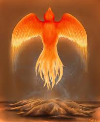 we #rise we #ascend