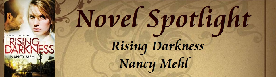 Novel Spotlight: Rising Darkness
