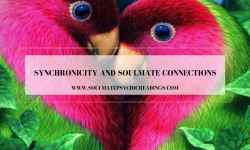 Synchronicity and Soulmate Connections