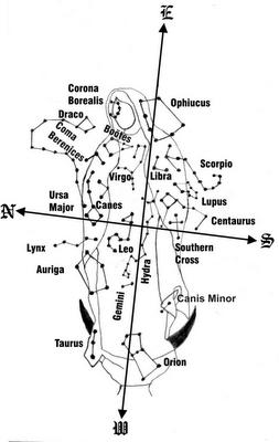 OLG Constellations