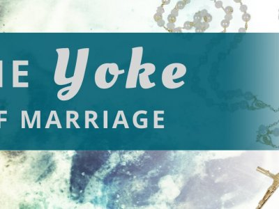 Bound by Lasso – The Yoke of Marriage