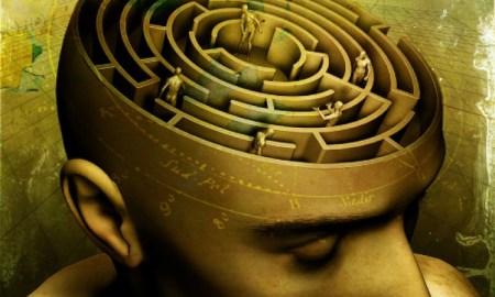9 интересных фактов психологии