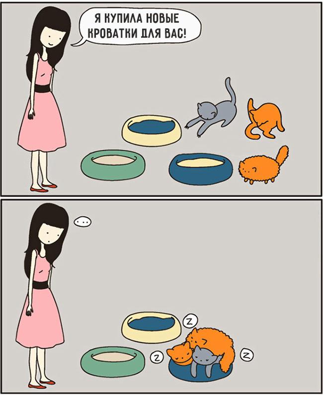 комиксы-про-отношения-кошек-и-людей-1
